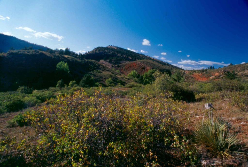 Imagen 1: Espacio abierto de Red-Tail Ridge