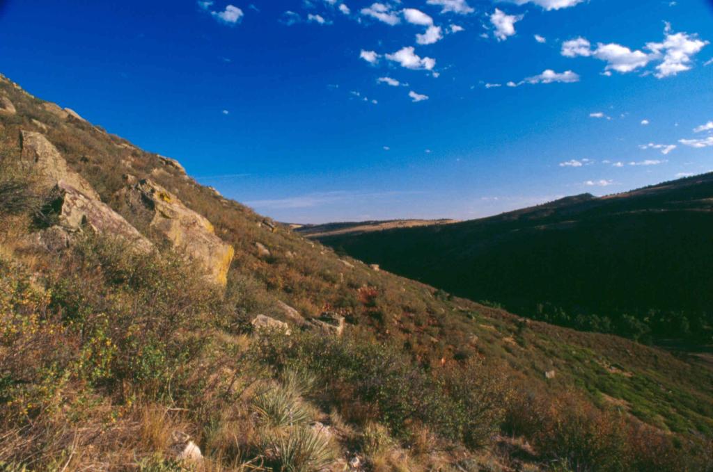 Imagen 2: Espacio abierto de Red-Tail Ridge