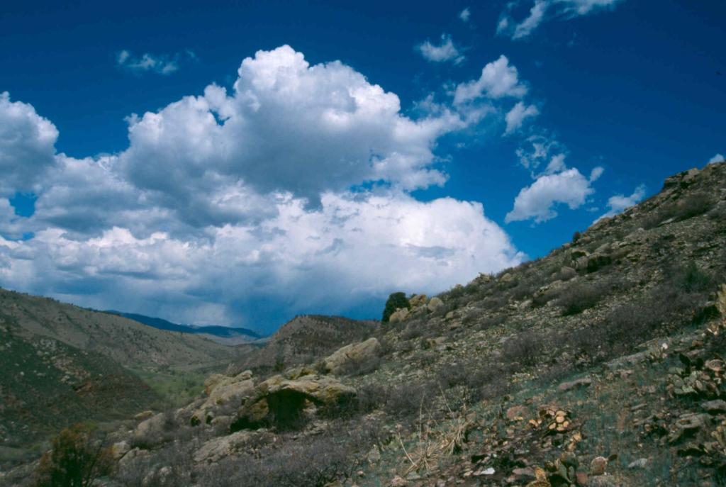 Imagen 3: Espacio abierto de Red-Tail Ridge
