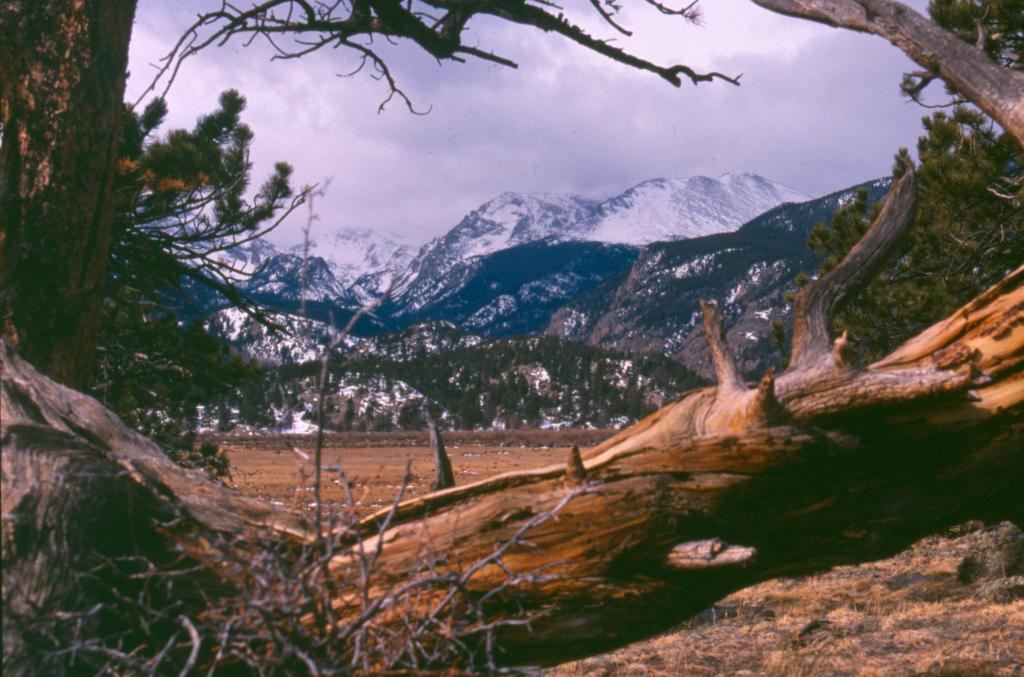 Imagen 3: Lake Estes Trail