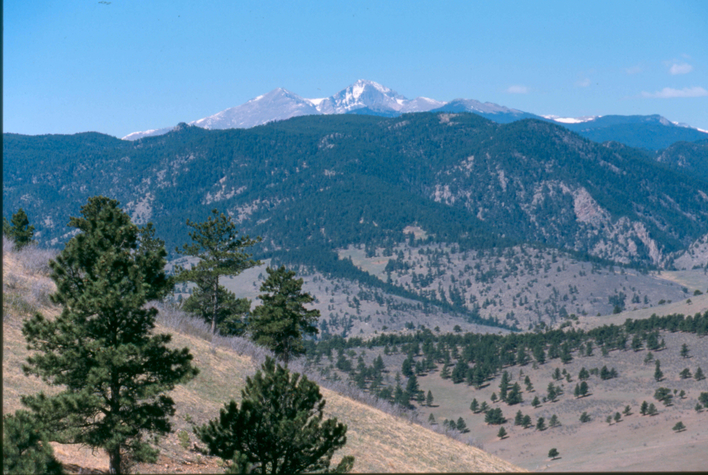 Image 3: Blue Mountain Bison Ranch