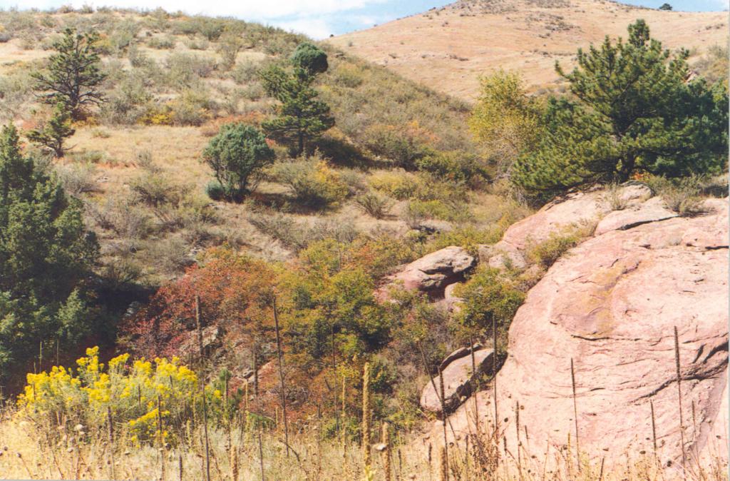 Image 1: Harper Conservation Easement