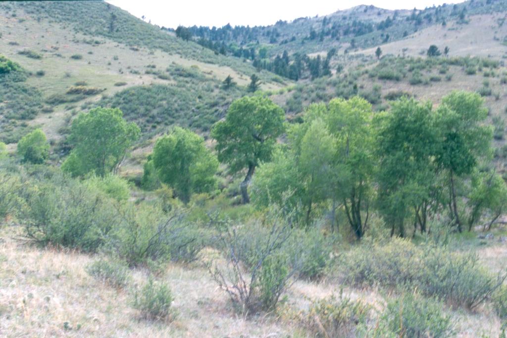 Image 2: Harper Conservation Easement