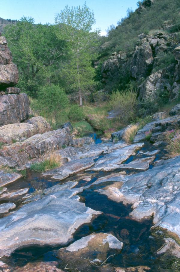 Image 5: Harper Conservation Easement