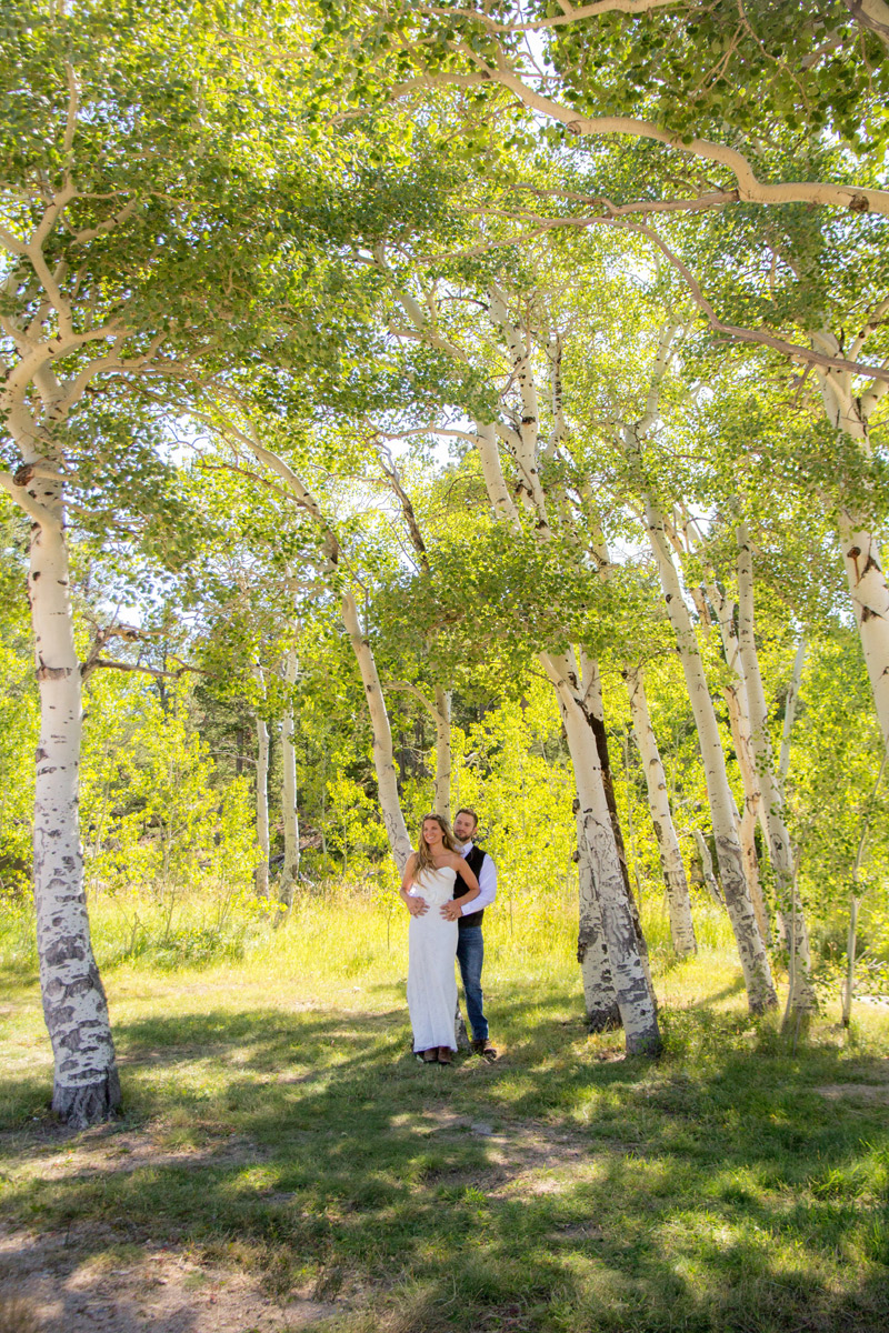 Image 4: Weddings in Estes Park