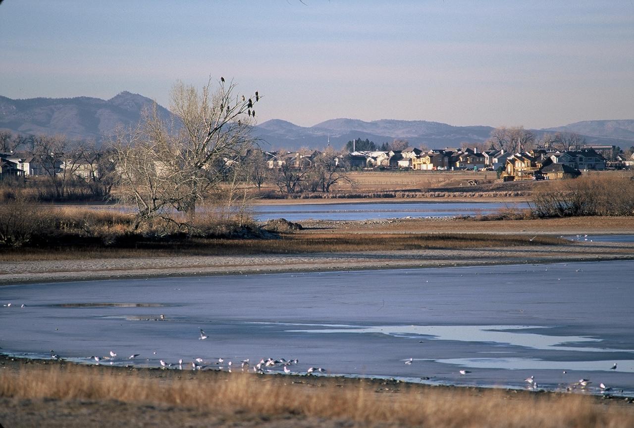 Image 3: Fossil Creek Reservoir Regional Open Space