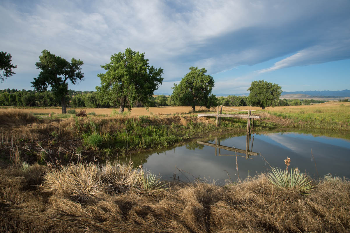 Image 5: Little Thompson Farm