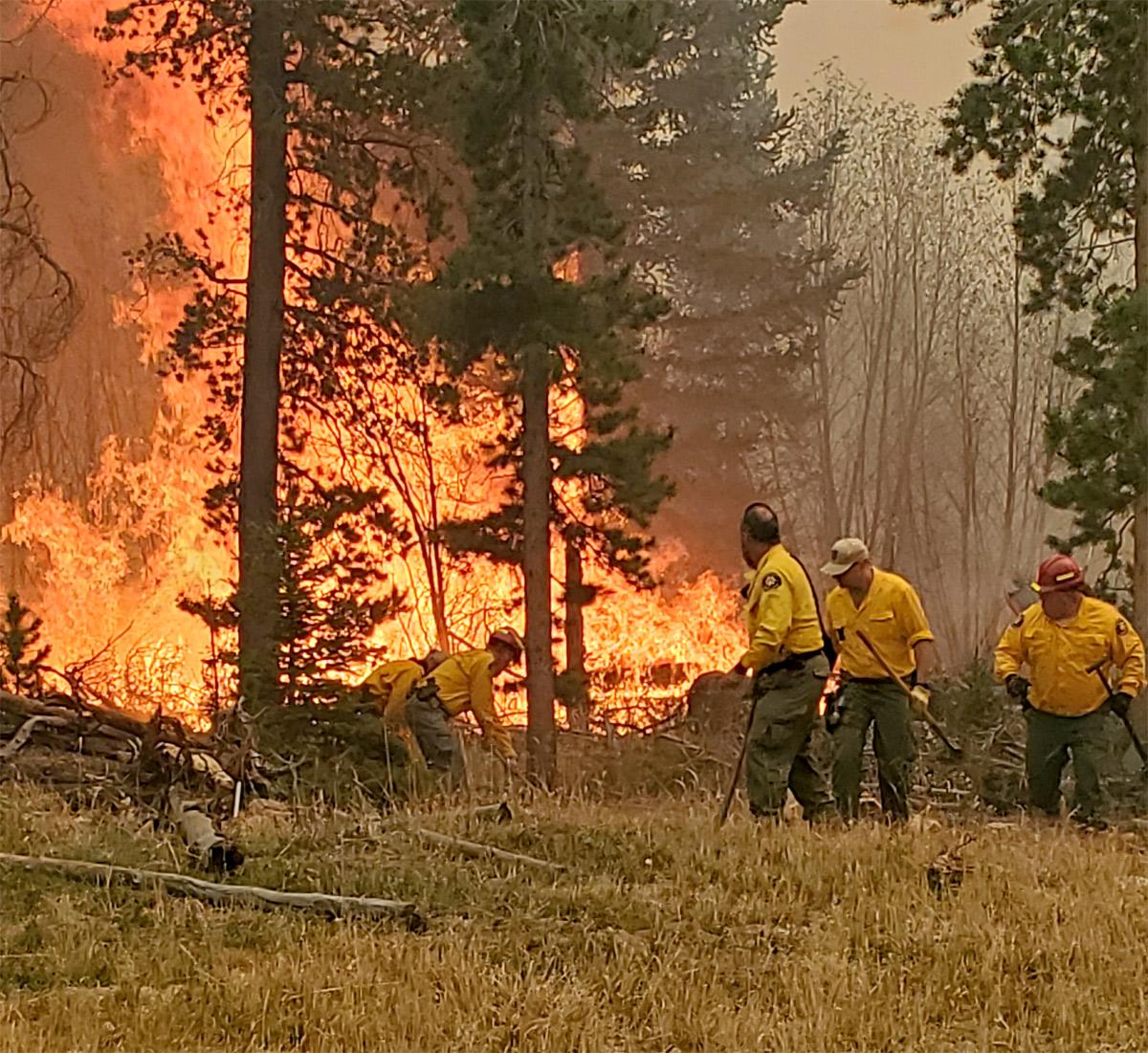 Imagen 1: Fuego