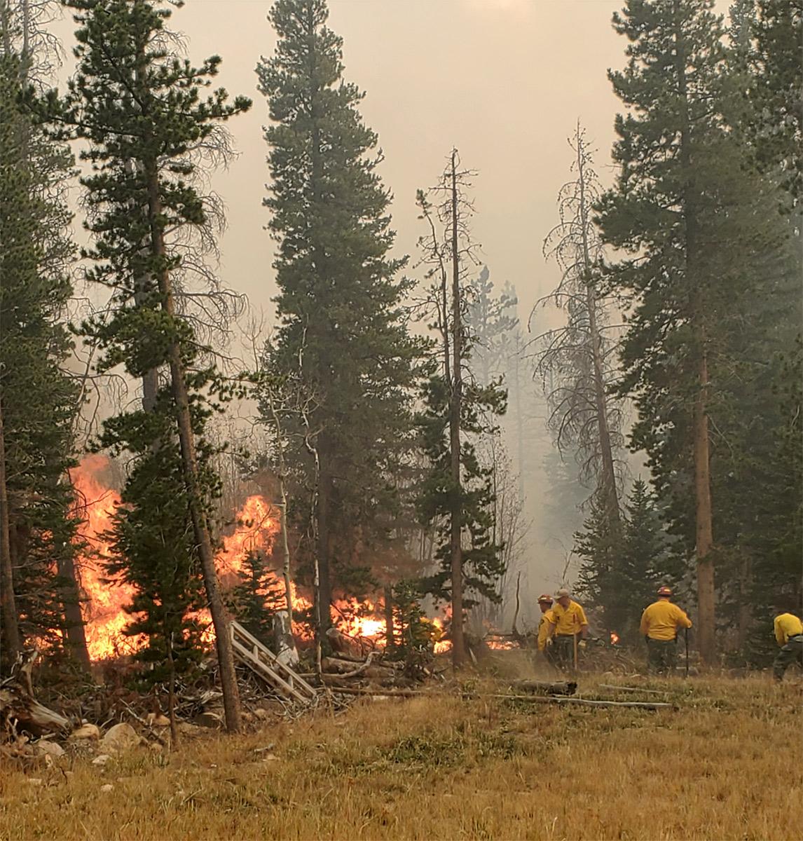Imagen 2: Fuego