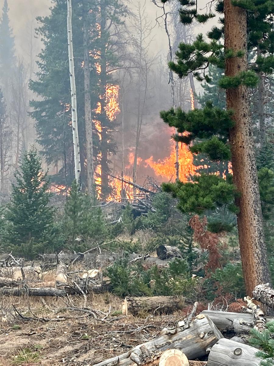 Imagen 4: Fuego