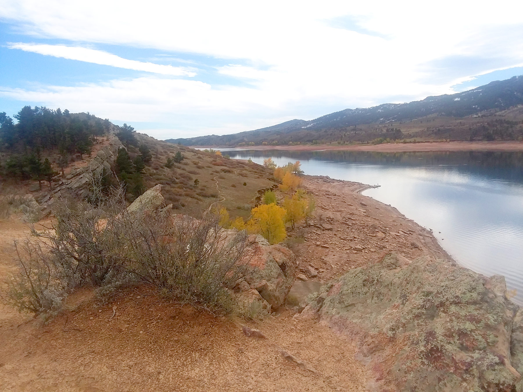 Image 30: horsetooth-shrubs