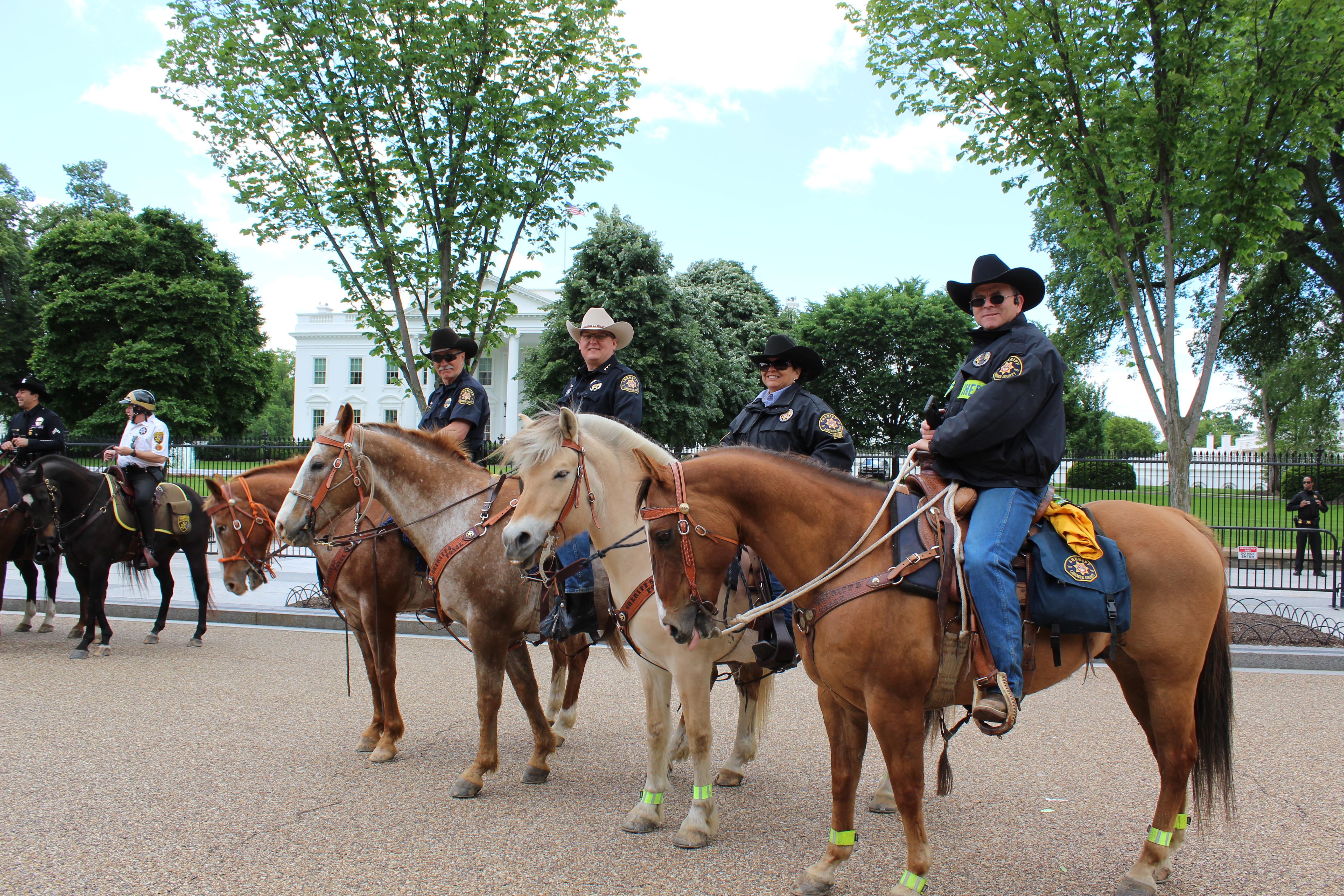 Imagen 13: Posse del Sheriff