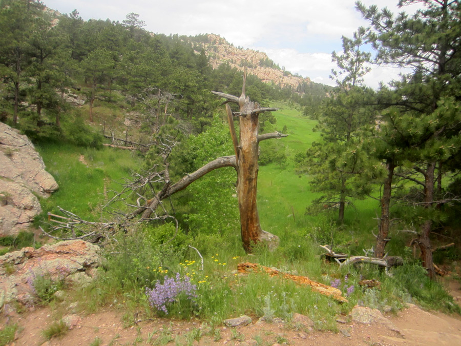Image 7: Horsetooth Mountain