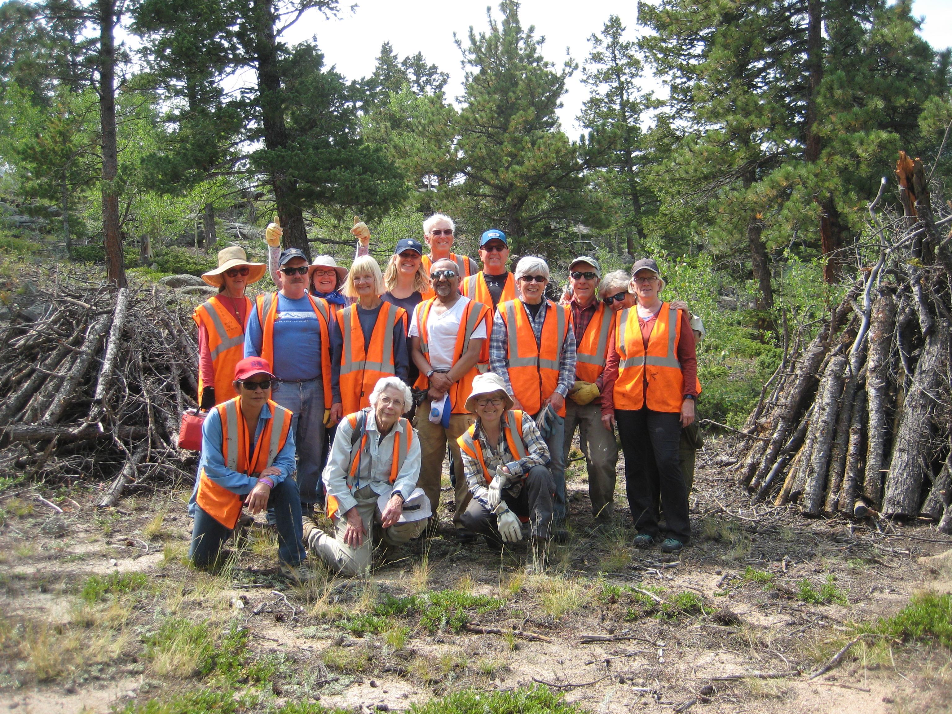 Solicitar un enlace de proyecto de voluntariado grupal
