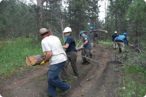 conservation corps hard at work