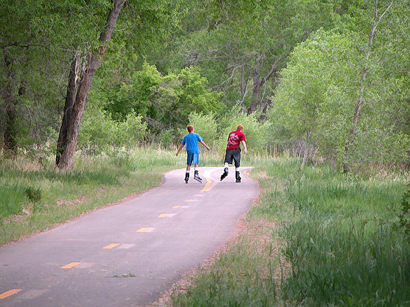 Image 5: Lions trail