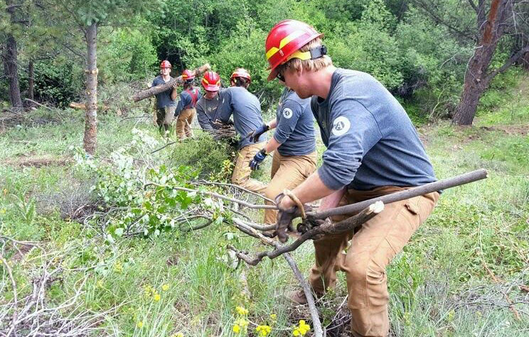 Larimer County<br>Conservation Corps link
