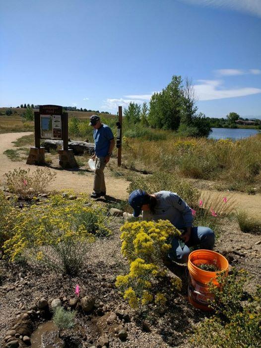 Image 1: Native Plant Society, a Small Grant award recipient