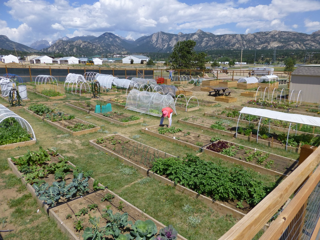 Image 1: Grants are available for projects that connect people to the land, such as a community garden like this one by past grant recipient Estes Valley Community Garden. Photo courtesy of EVCG.