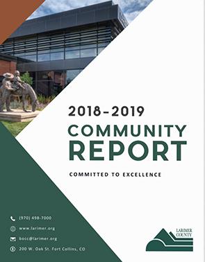 Enlace del Informe de la comunidad 2018-2019