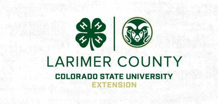 Casa abierta CSU 4-H del condado de Larimer a través de Zoom: construyendo un futuro mejor