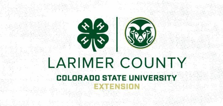 Larimer County CSU 4-H open house via Zoom: building a better future