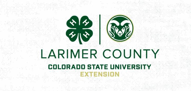 Larimer County CSU 4-H open house via Zoom: building a better future