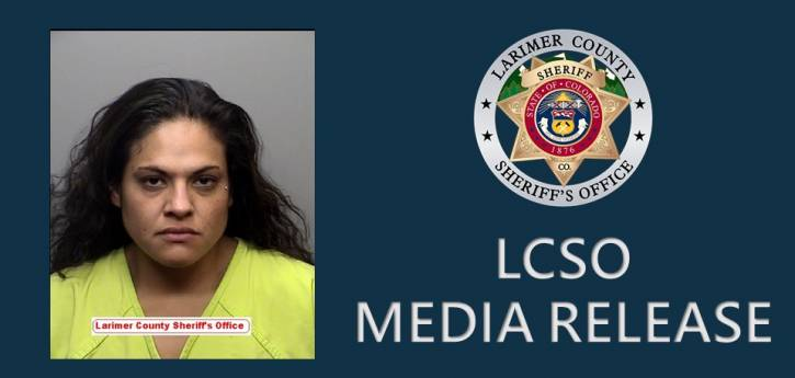Woman Arrested Following Vehicle Pursuit and Crash
