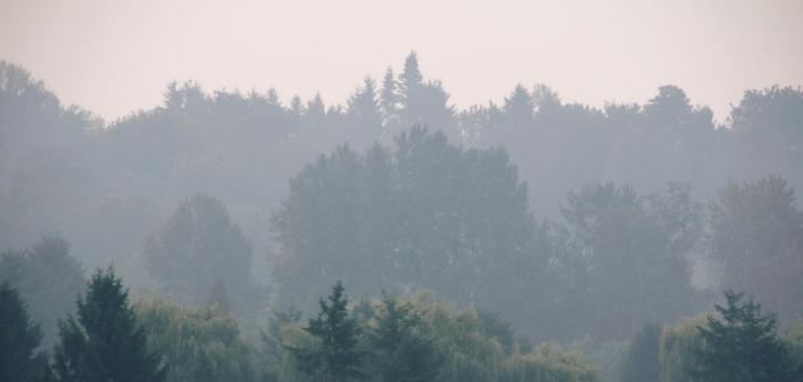 Calidad del aire altern