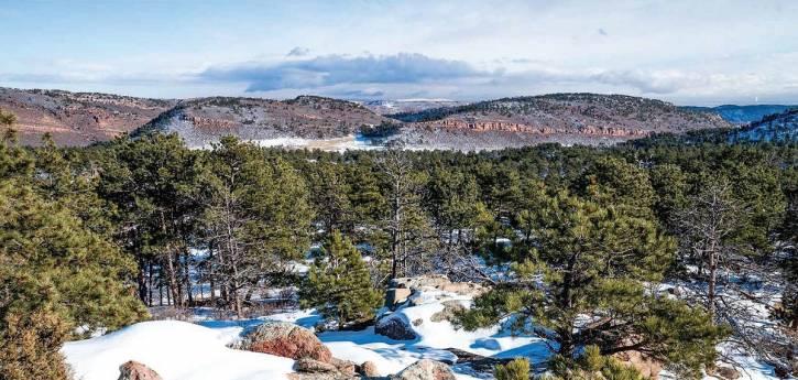 La familia Steputis se asocia con el condado de Larimer para conservar un rancho de 884 acres