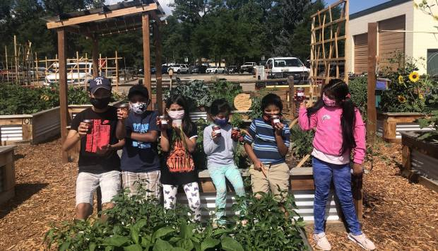 Small Grants available for neighborhood, community projects