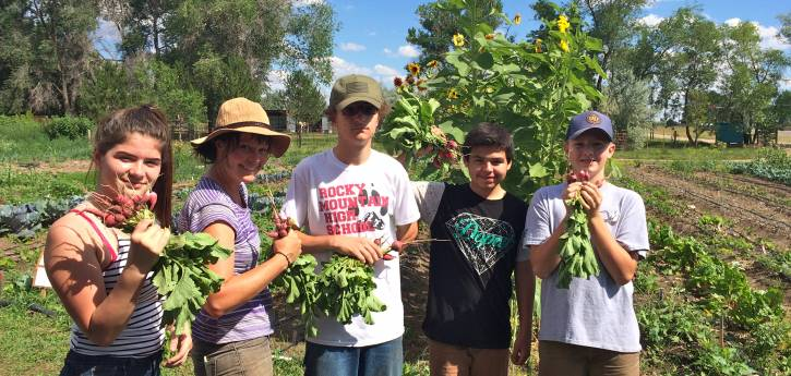 2019 Small Grants Support Local Farms, Native Plant Restoration, Outdoor Classroom