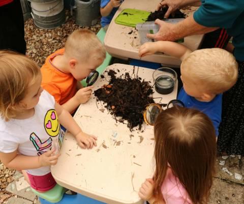 Taller para niños pequeños: La naturaleza no desperdicia nada