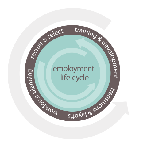 employment life cycle