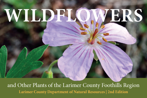 LCDNR Wildflower Guide Cover 2nd Edition